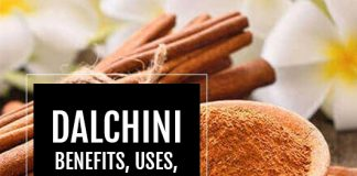 Dalchini: Amazing Benefits, Uses, Dosage, Side Effects, Price