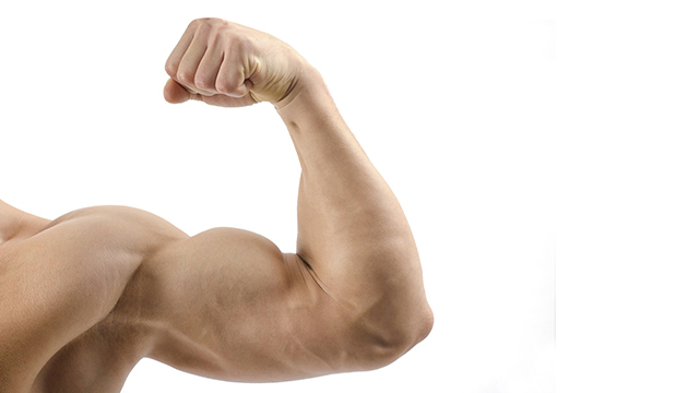 Increases-muscle-mass-and-strength