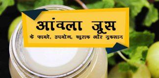 Amla Juice ke fayde in Hindi आंवला जूस: लाभ, उपयोग, खुराक, दुष्प्रभाव, मूल्य