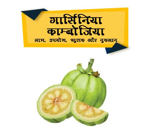 Garcinia Cambogia Indien Hindi Name