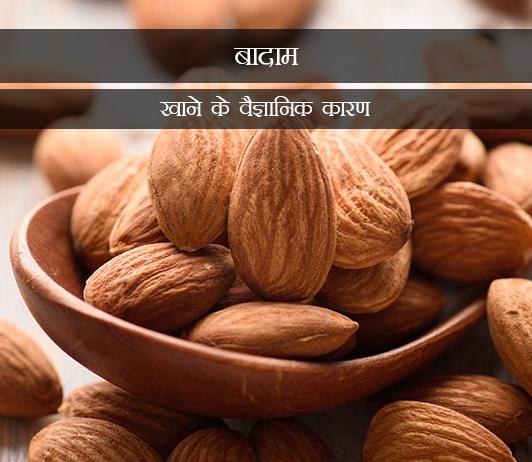 5 Scientific Reasons To Have Almonds in Hindi बादाम खाने के वैज्ञानिक कारण