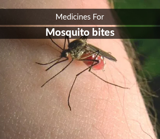 List of 13 Best Medicines for Mosquito bites- Composition, Dosage, Popularity & More (2019)