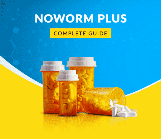 Noworm Plus Tablets: Uses, Dosage, Side Effects, Price, Composition & 20 FAQs