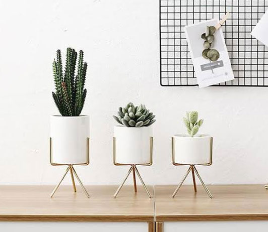 Room Shine With These Decor Items
